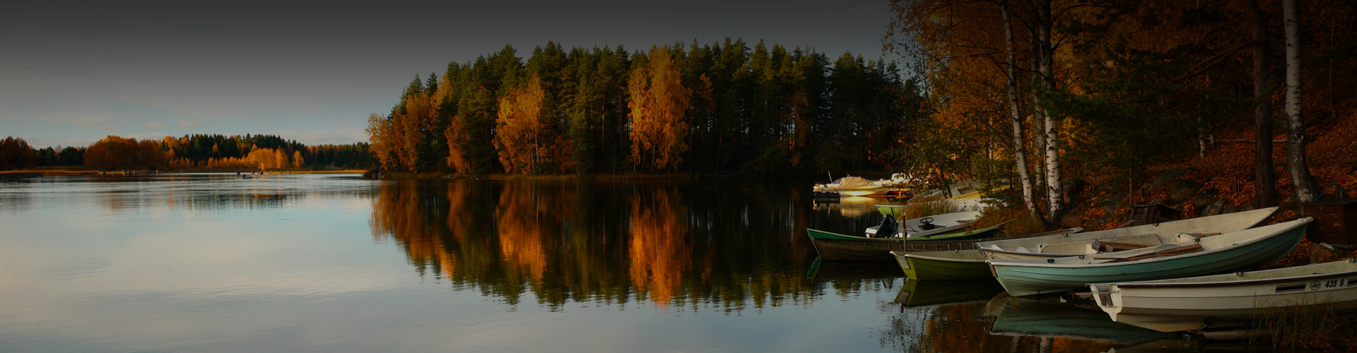 Photo of a forested lake during autumn